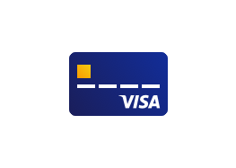 visa-card-icon-263x187